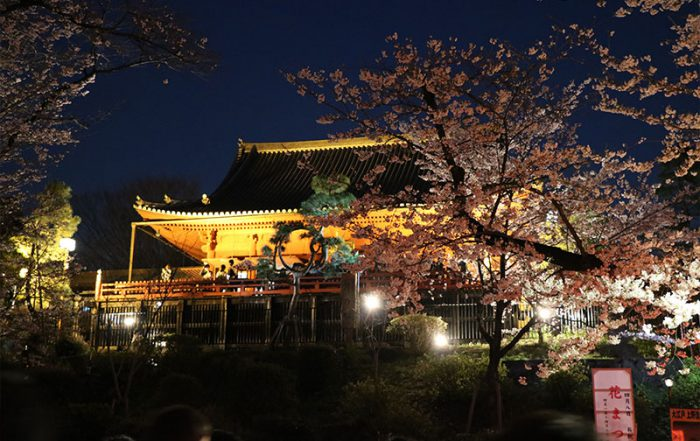 your-japan-journey-ueno