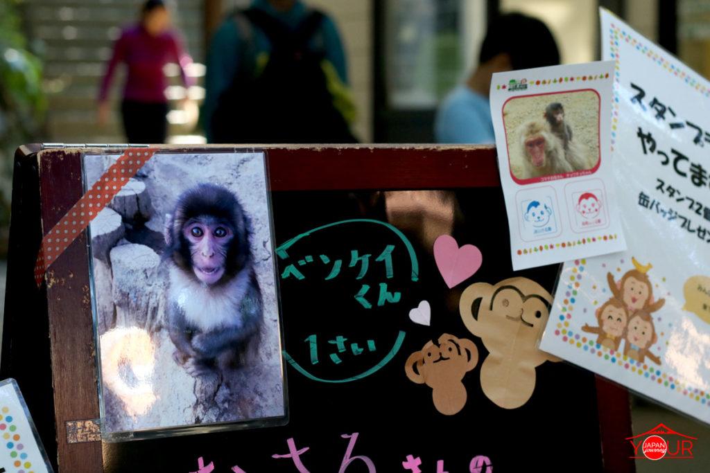 Monkey Park Mt. Takao