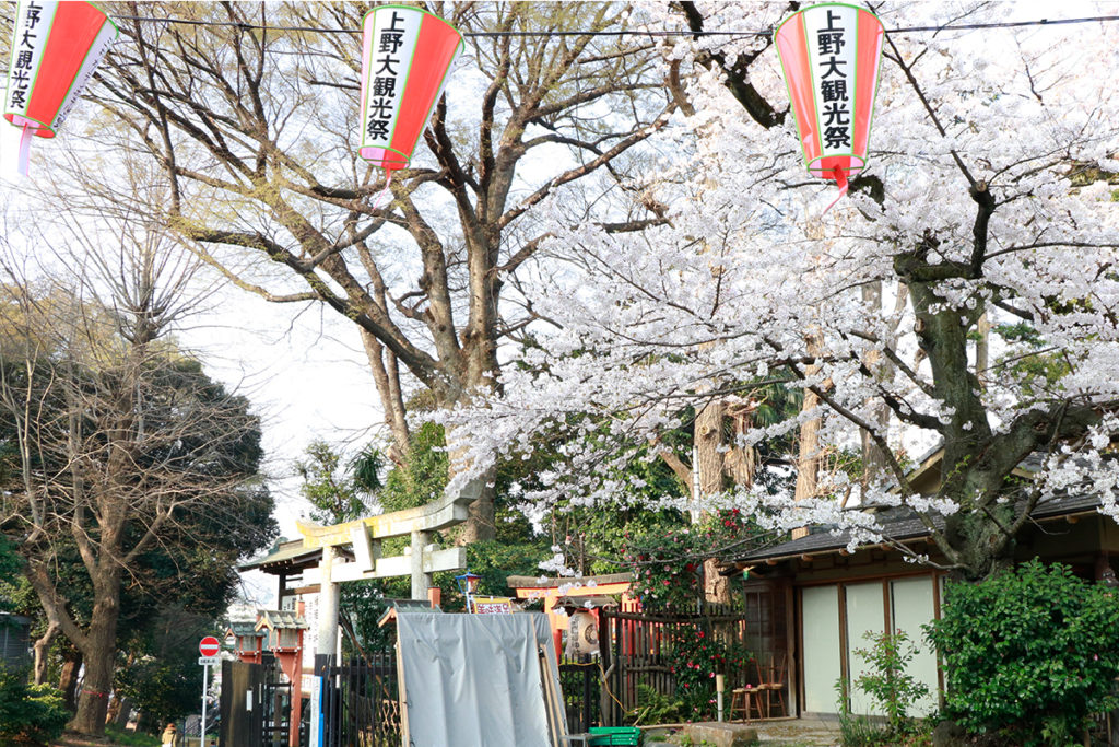 spring-2018-ueno-park-4