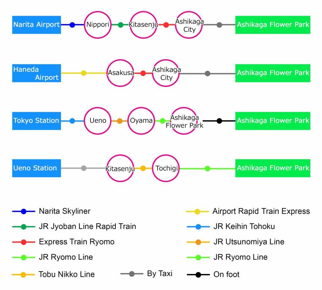 Train Guide to Ashikaga Flower Park