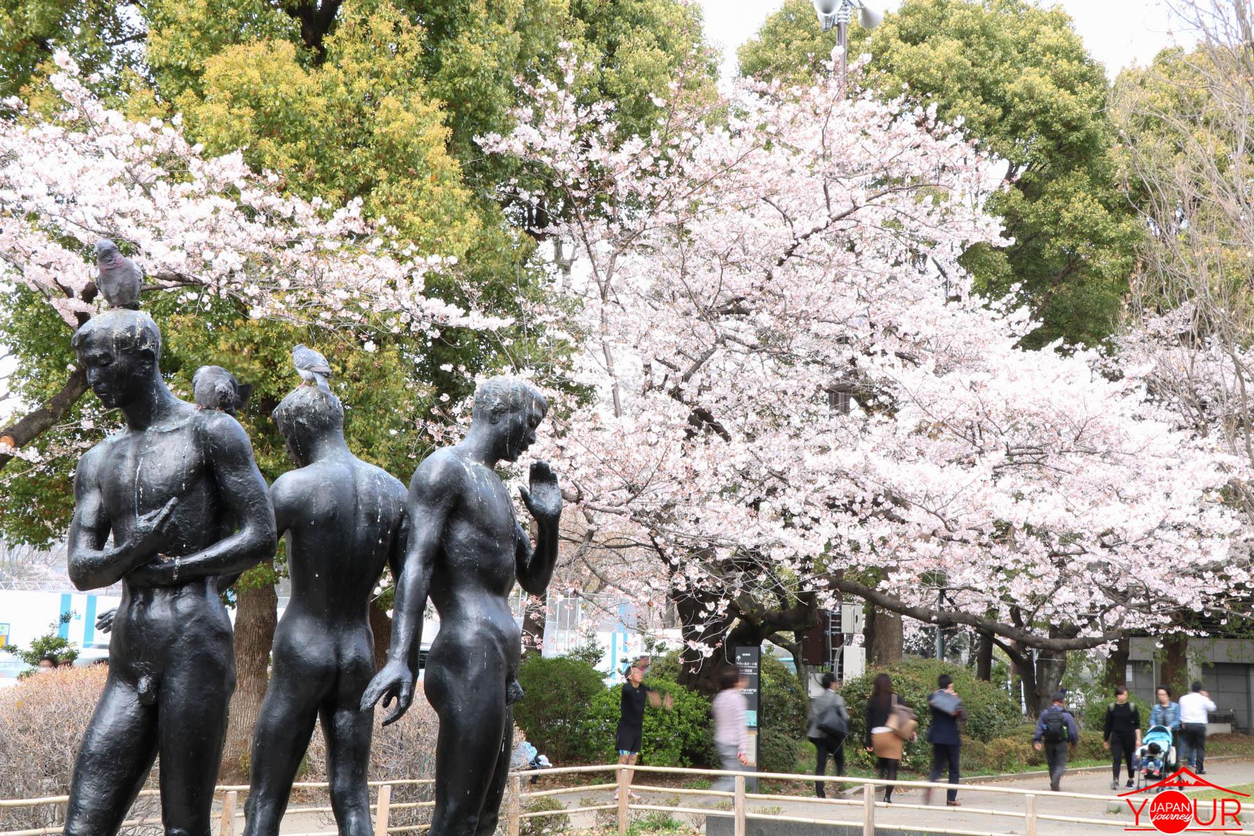 Japan Cherry Blossom Forecast 2021 - Chidorigafuchi Park