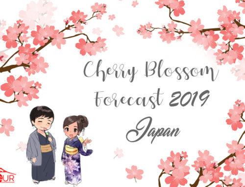 Japan Cherry Blossom Forecast 2019