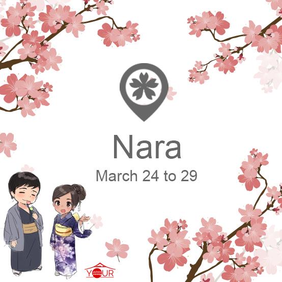 Nara_Cherry_Blossom_Forecast_2019