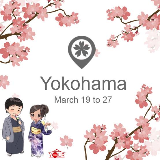 Yokohama_Cherry_Blossom_Forecast_2019