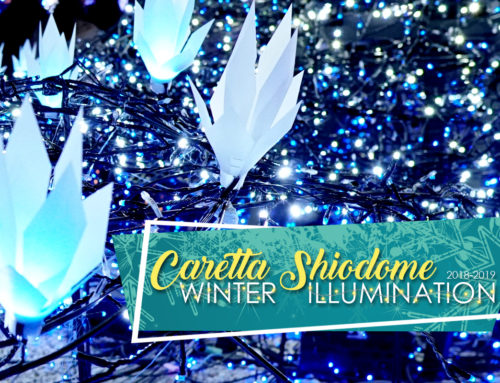 Caretta Shiodome Winter Illumination 2018-2019