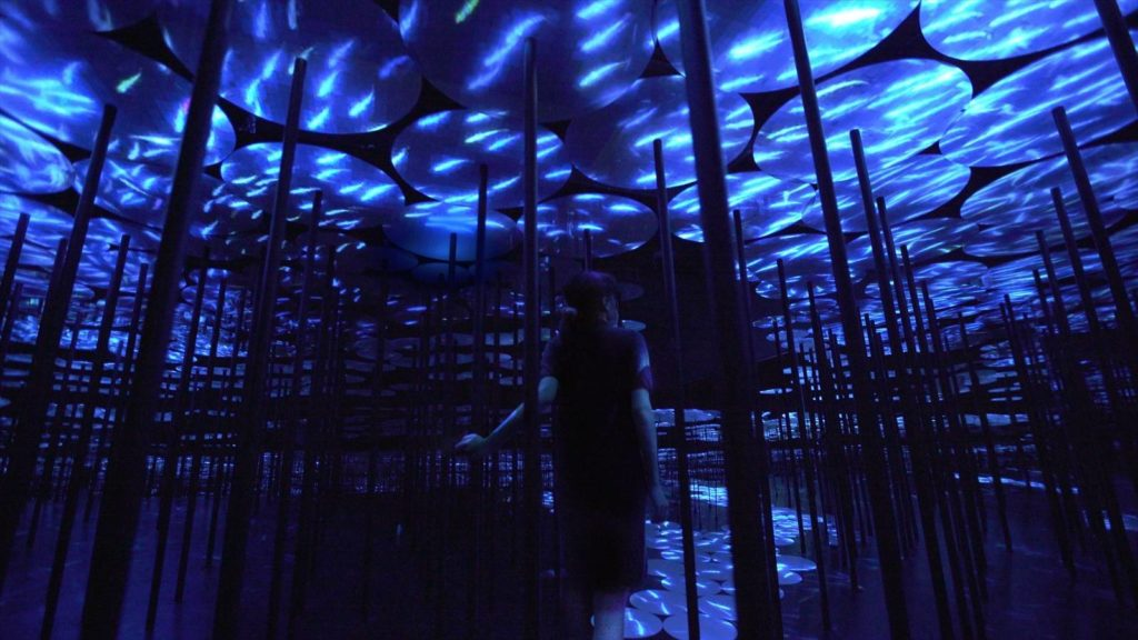 teamlab-memory-of-topography